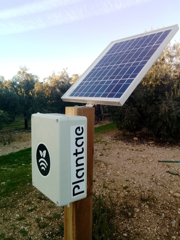 Plantae Moisture Sensors- The Best Holding Up In Storms