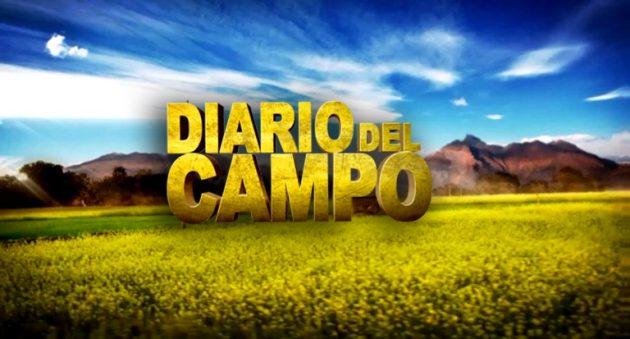 Diario del Campo