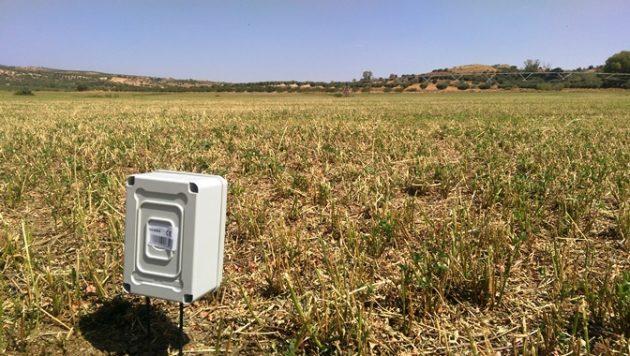 Pivot en Alfalfa