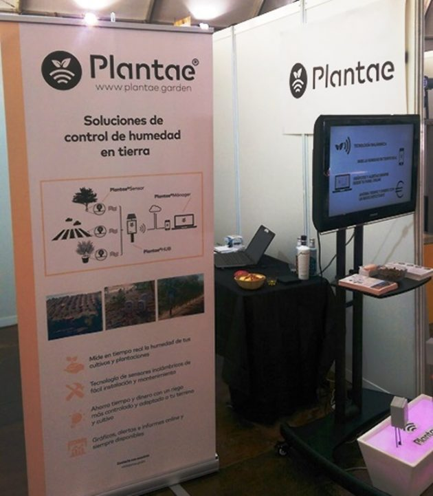 Fimart-Plantae noticia en Canal Sur