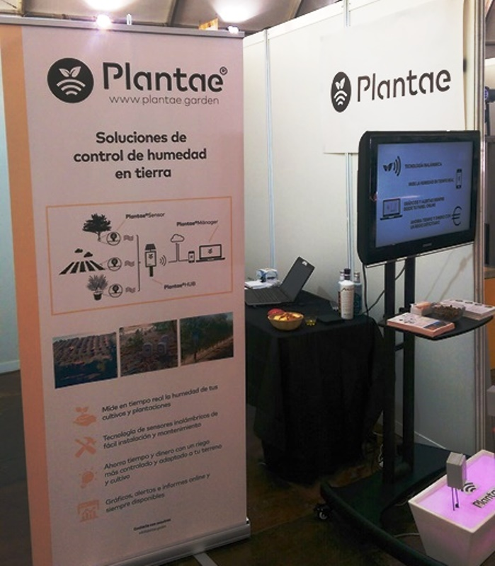 """Noticias Canal Sur: Plantae, empresa destacada dentro de Fimart"""