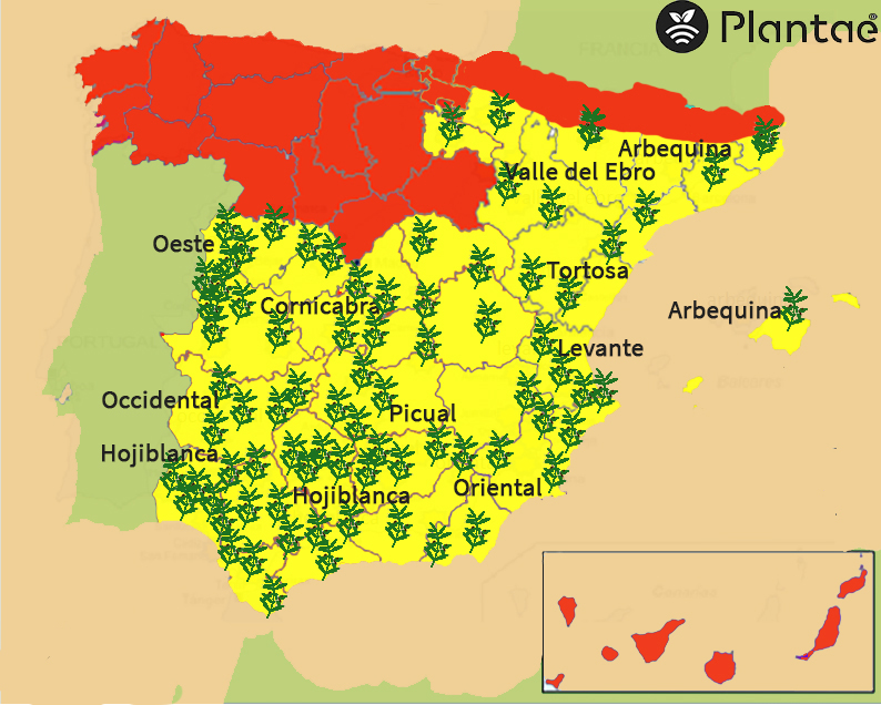 Mapa de olivos en España-Sensores/sondas agrícolas en olivos