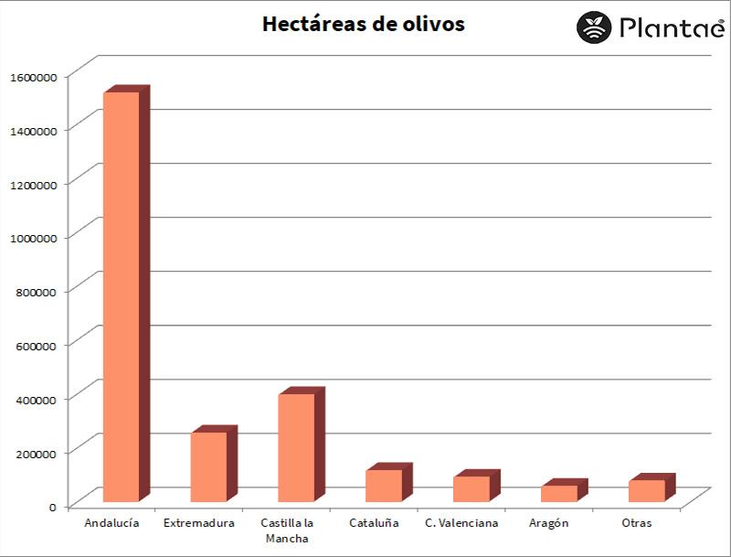 Hectáreas de olivos en España-Control con sensores/sondas agrícolas en olivos