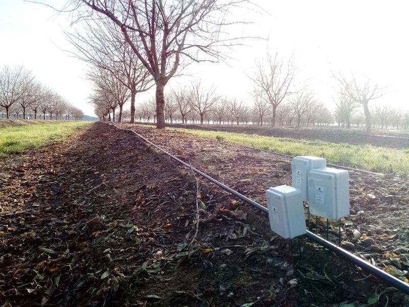 Agricultura en Extremadura con sensores Plantae