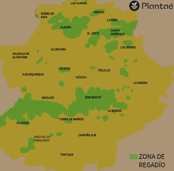 agricultura de regadío en Extremadura