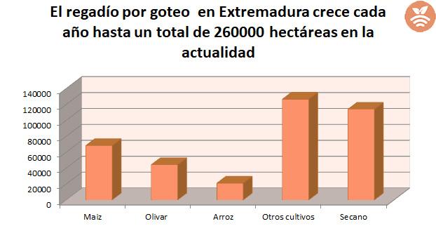Zonas de regadío en Extremadura