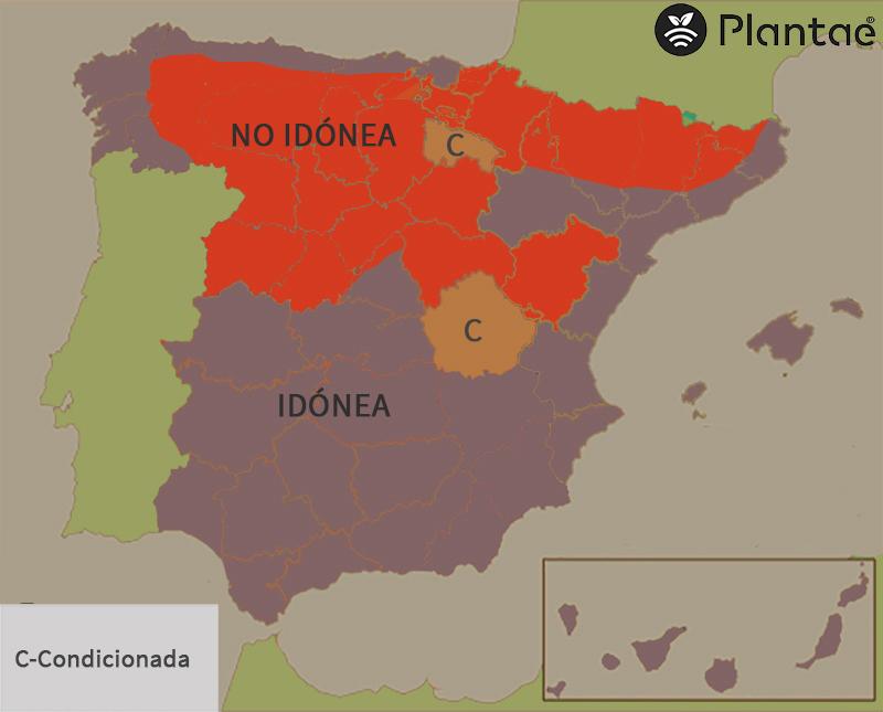Mapa de pistacho en España según heladas tardías