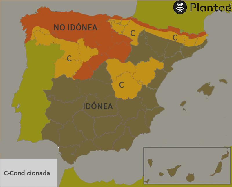 Pistacho en España según calor