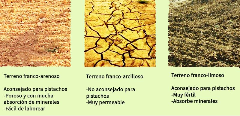 terrenos par pistacho