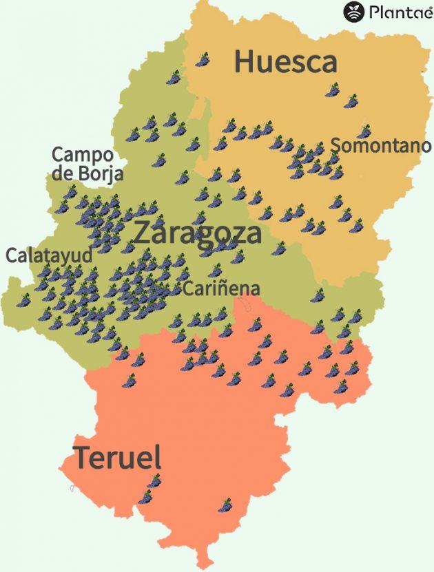 Mapa e viñedos de Aragón