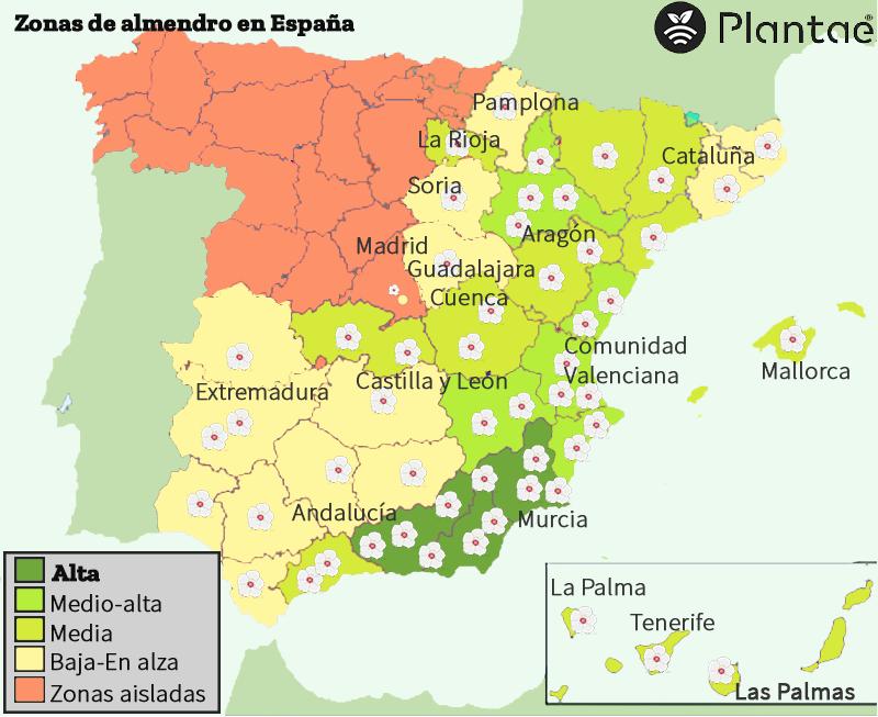 El almendro en España