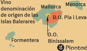 Vinos con denominación de origen en Baleares