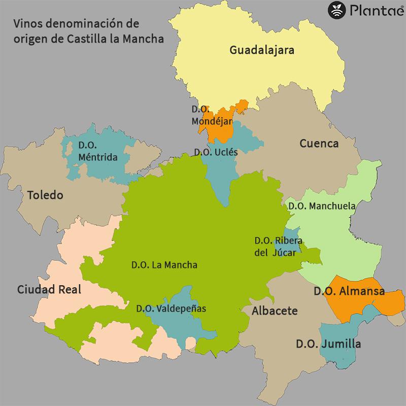 Vinos Castilla la Mancha-Fercam 2019