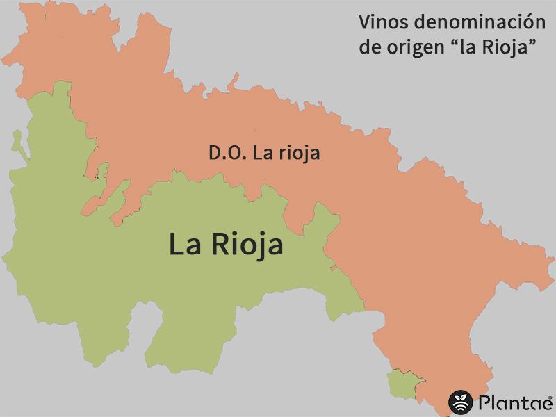 Vinos en la Rioja