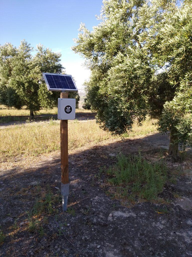 Hub Controlando los sensores/sondas agrícolas en olivos