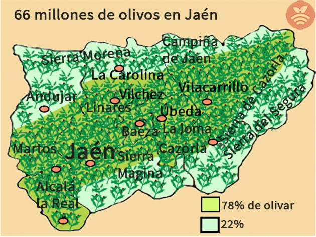 Mapa de olivos de Jaén