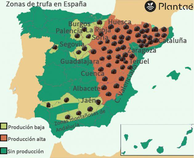 Mapa de trufa en España