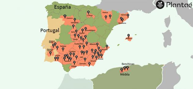 Sensores de humedad en Argelia