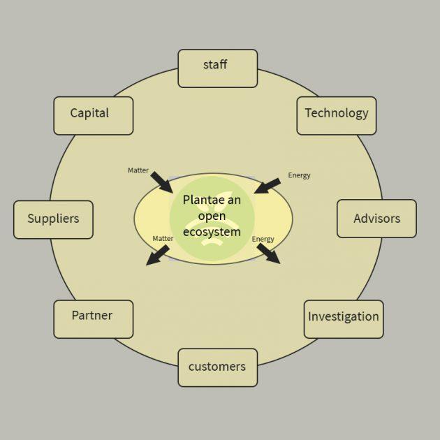 Plantae cómo ecosistema abierto