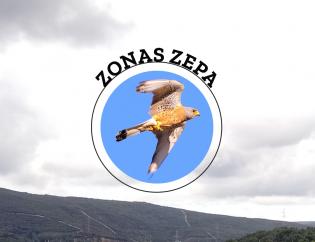 Zonas Zepa