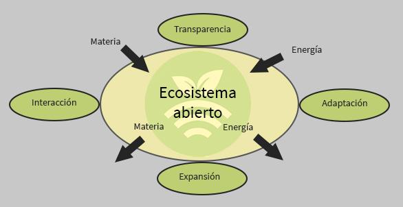 Ecosistema abierto en South Summit