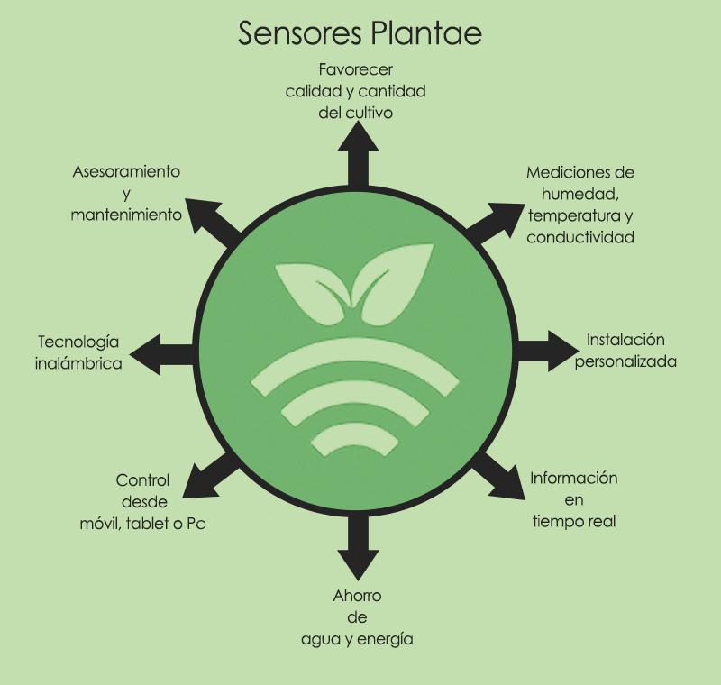 Sensores de humedad y temperatura Plantae