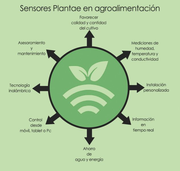 Plantae agro