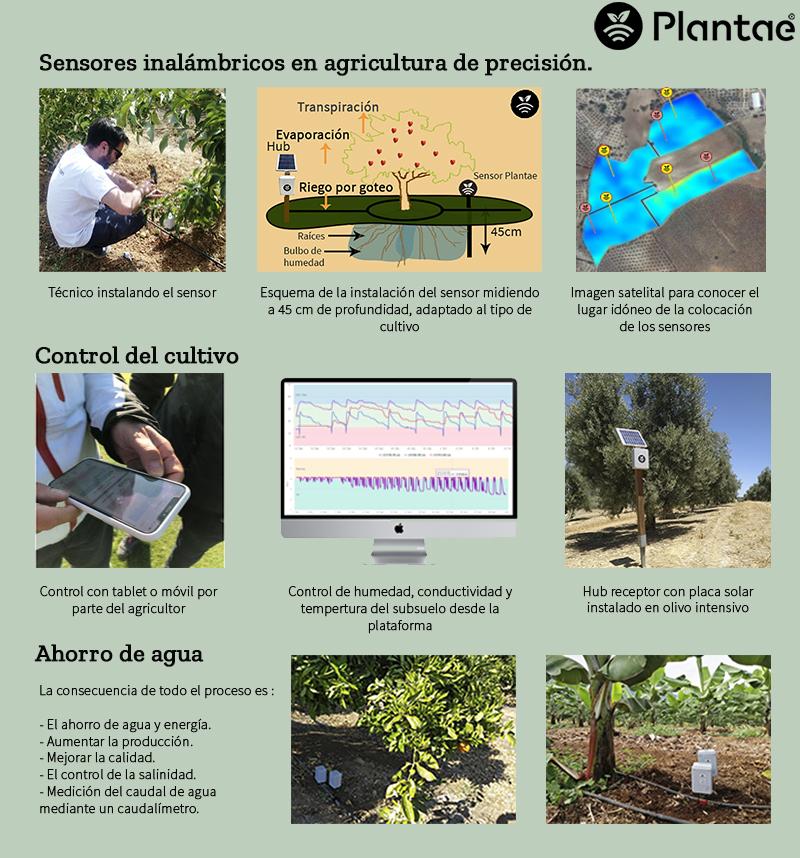 Sensores de humedad, control de riego y ahorro de agua en el sector agroalimentario