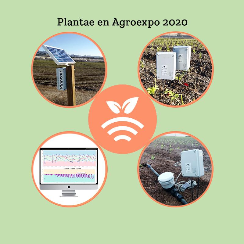 Novedades Plantae en feria de Don Benito