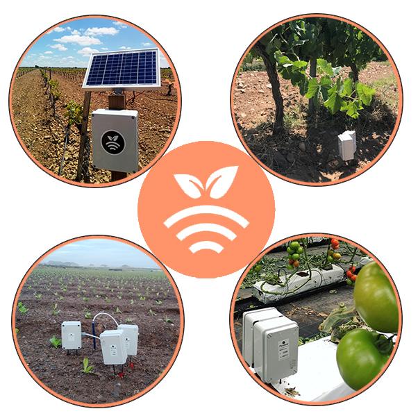 Plantae Sondas y sensores en cultivos-