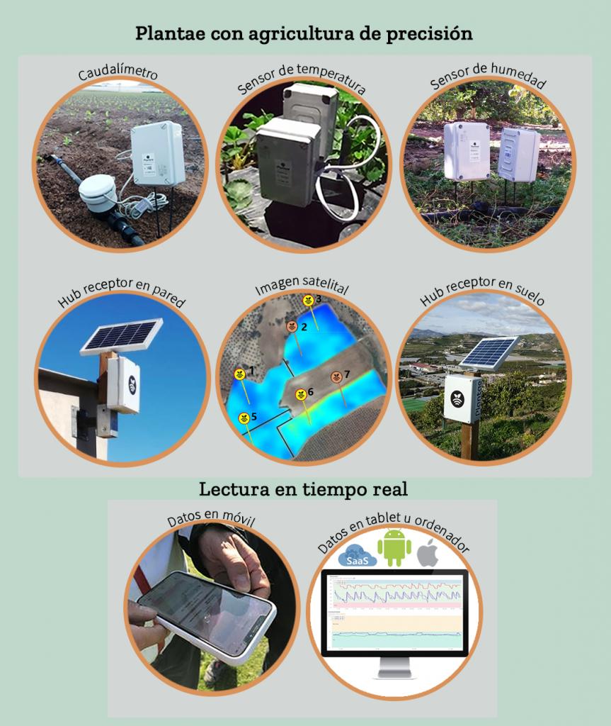 agricultura de precisión con tecnología Plantae