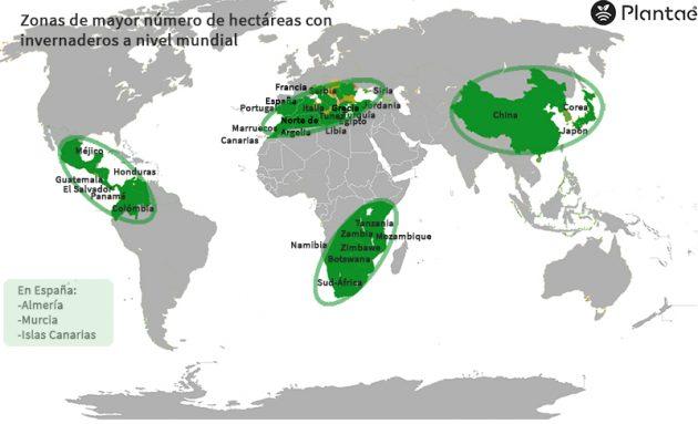 Invernaderos a nivel mundial