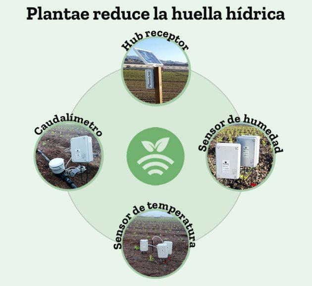 Plantae reduce la huella hídrica