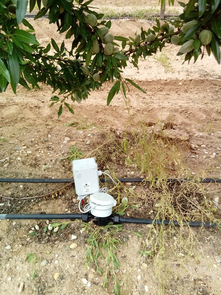 Caudalímetro de agua de riego en almendro intensivo