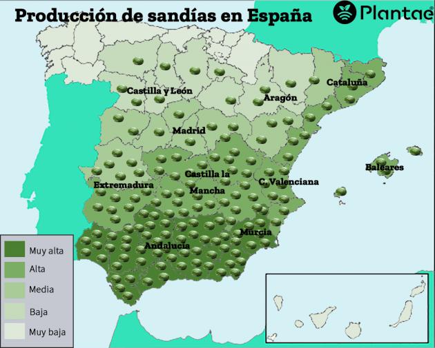 La sandia en España