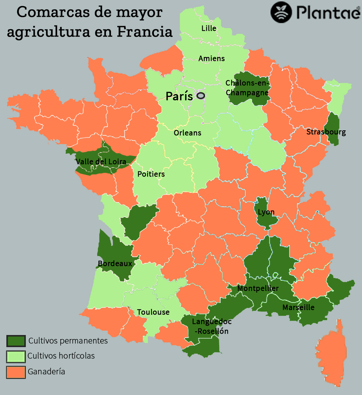 agricultura en Francia