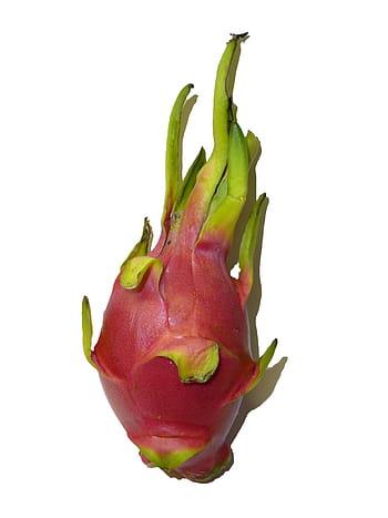 Fruto de la pitaya
