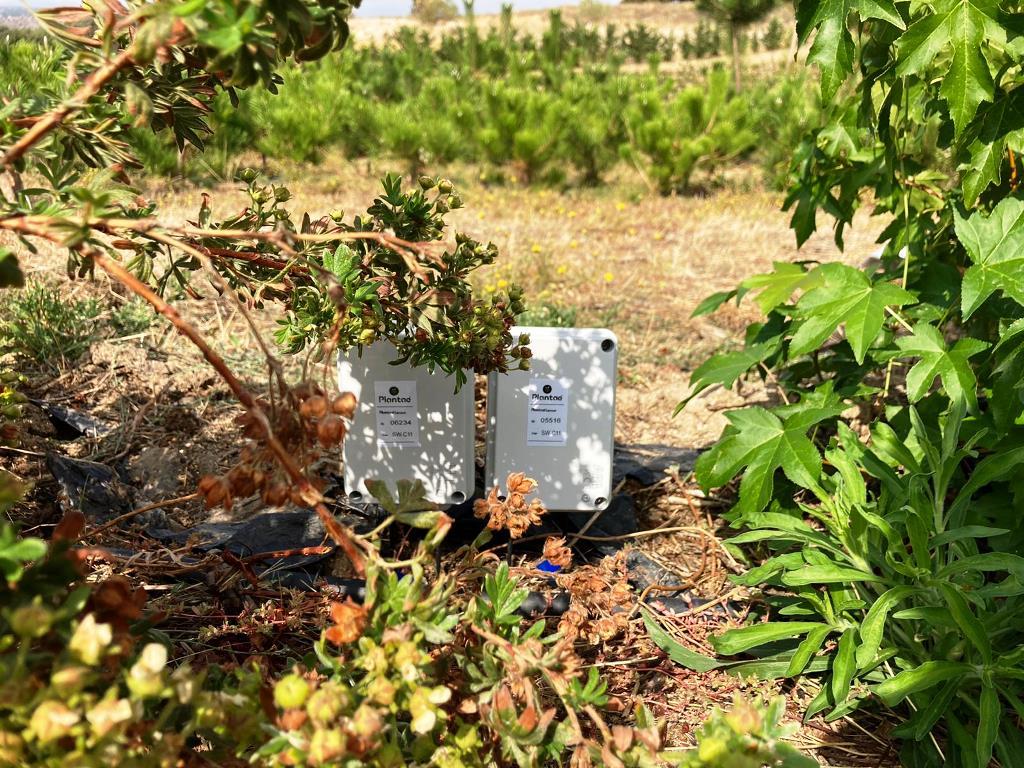 Riego controlado por sensores/sonda Plantae