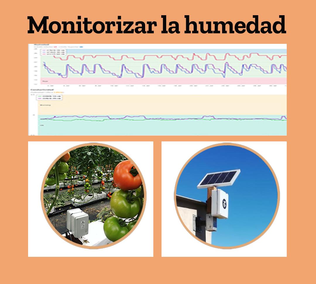 Monitorizar la humedad