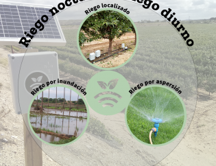 Night irrigation or daytime irrigation-Factors that influence and favor the crop