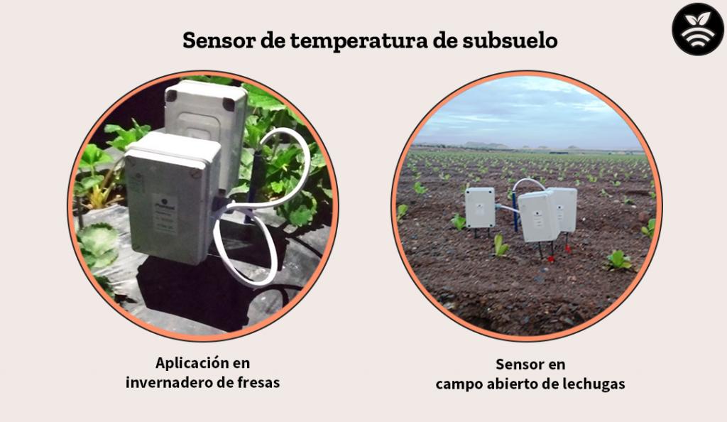 Sensor de temperatura de subsuelo para optimizar el agua de riego