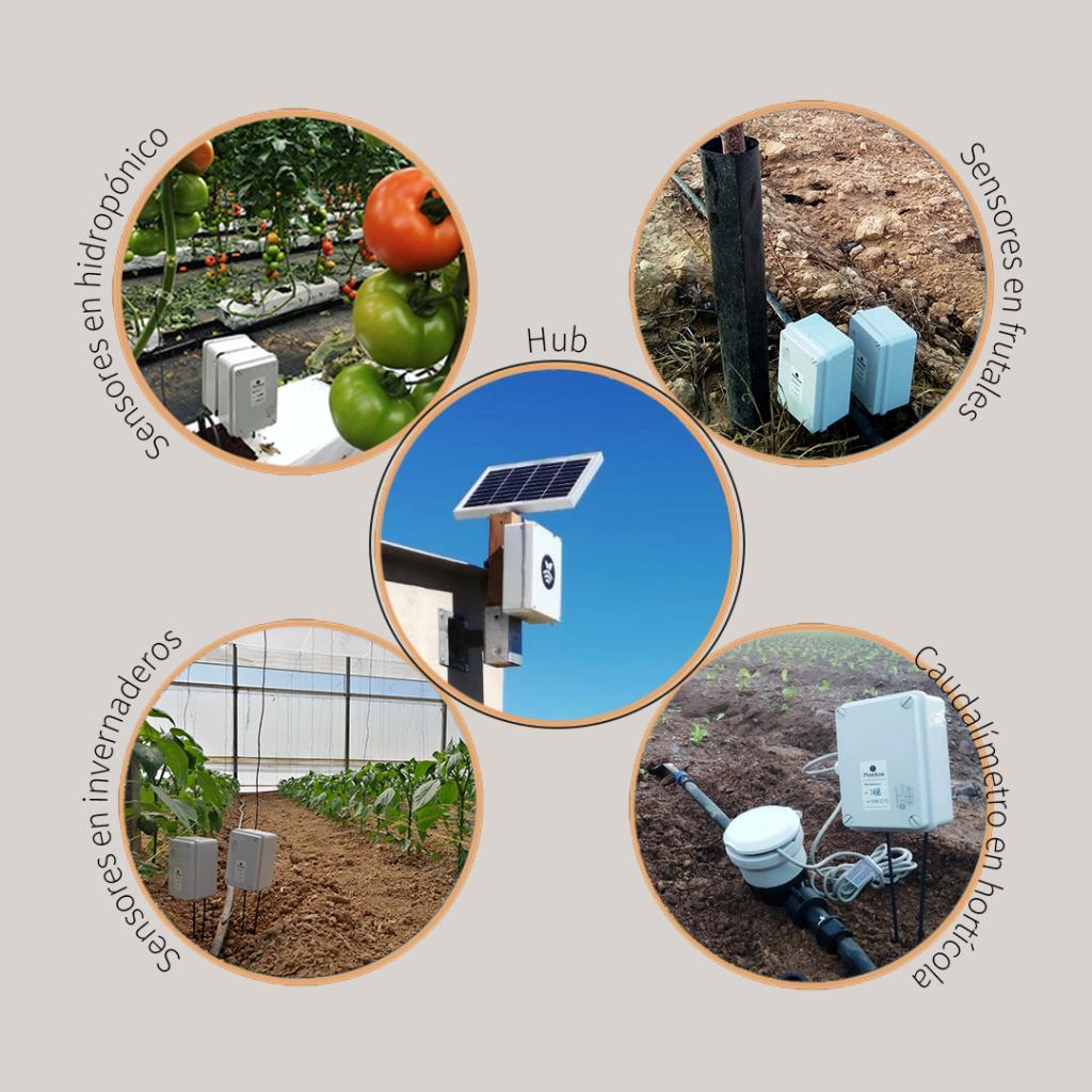 Sensores para controlar el agua de riego Tecnología Plantae para monotorización de la agricultura