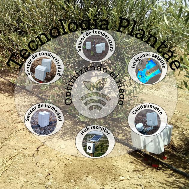 Sensores Plantae
