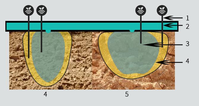 Bulbo húmedo con riego controlado por sensores de humedad en almendro