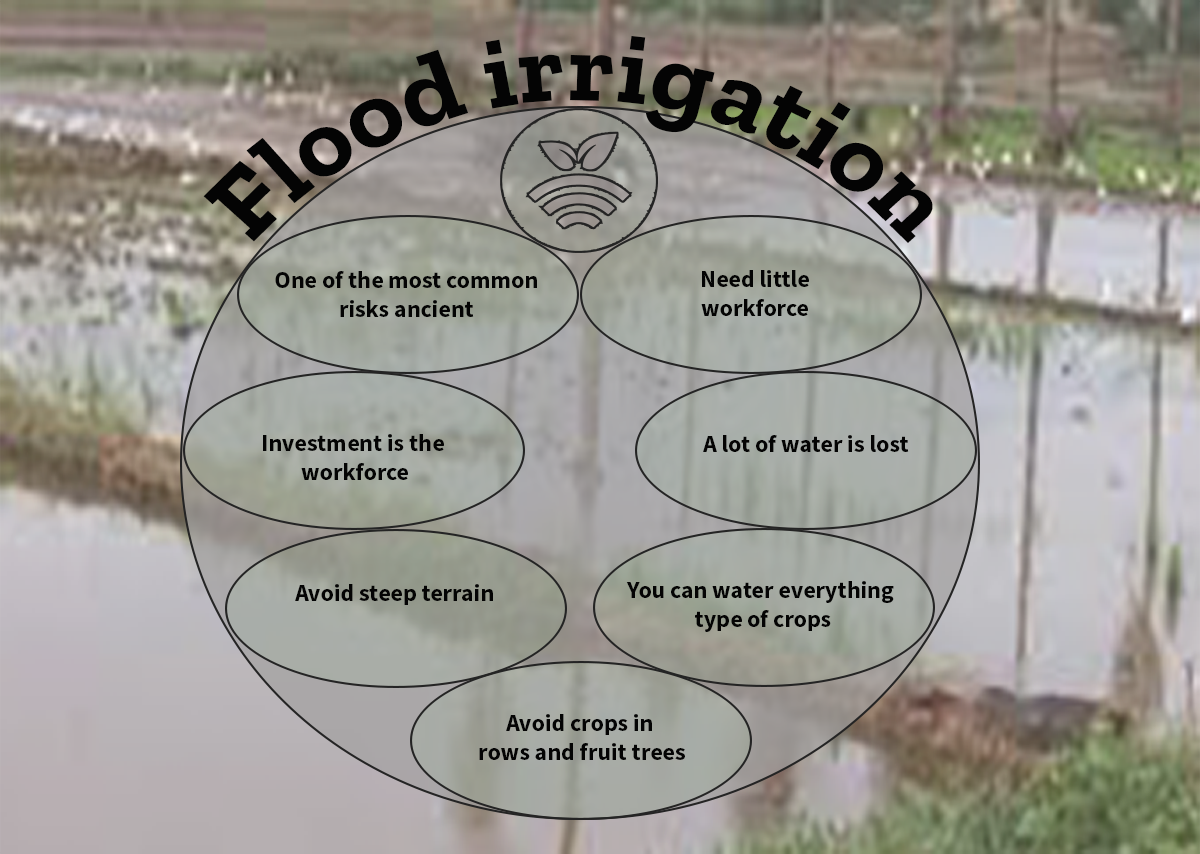 Irrigation by laying or flooding