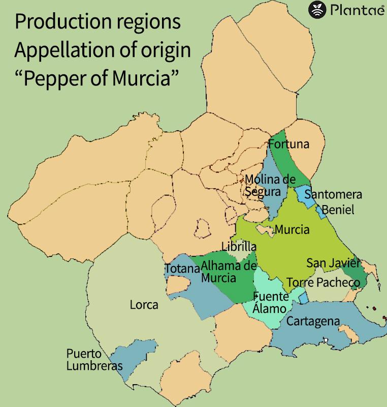 Regadío de precisión-Mapa de producción de pimientos en Murcia