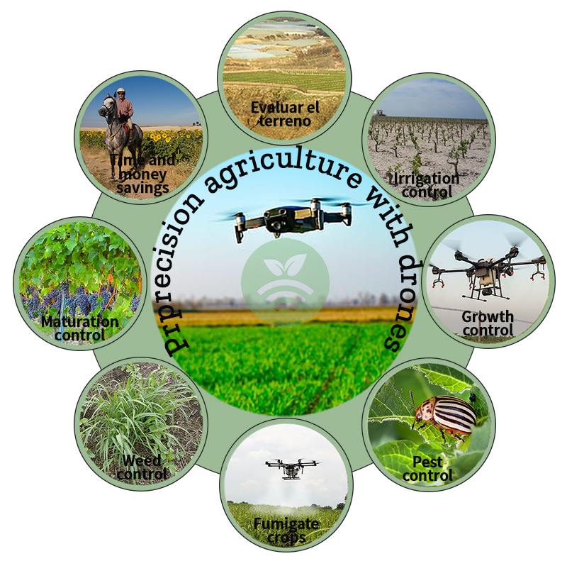 Satellite images and drones in the agroforestry field