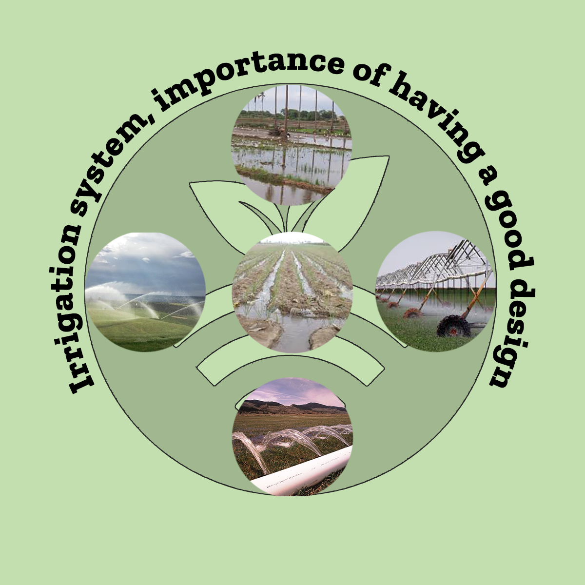 Fenacore irrigation fair