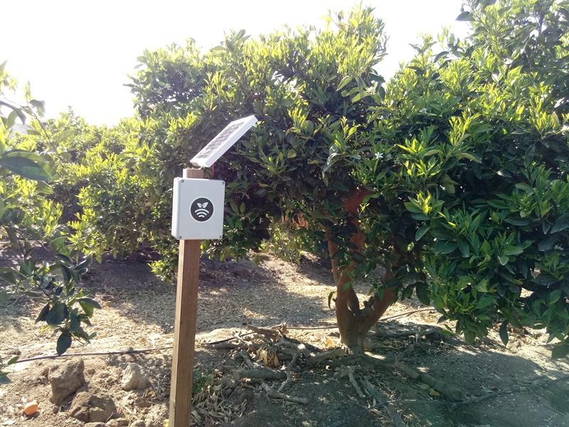 Plantae obtiene el sello EIBT