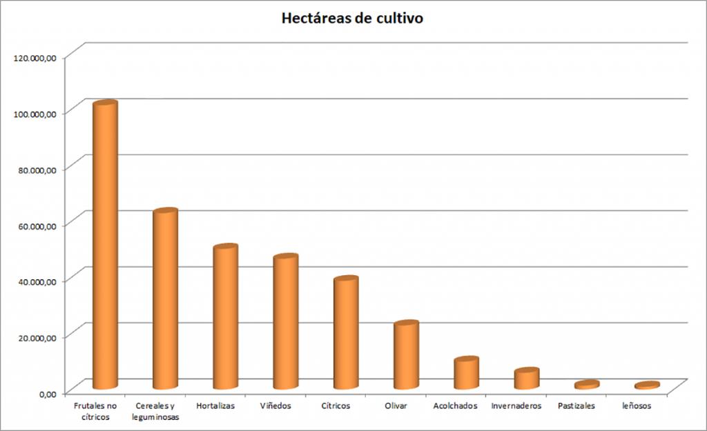 Agricultura en Murcia